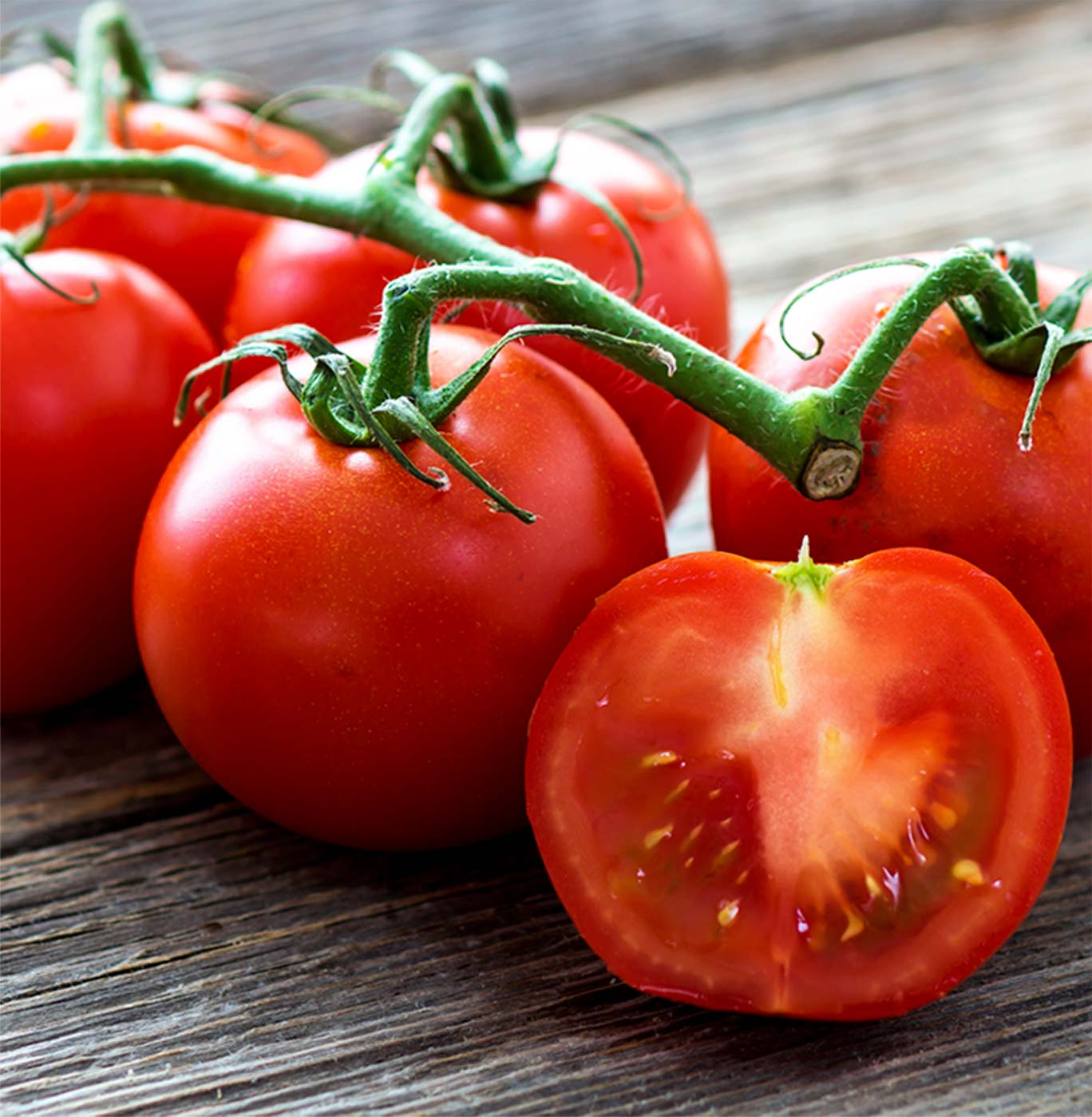 Image result for tomate